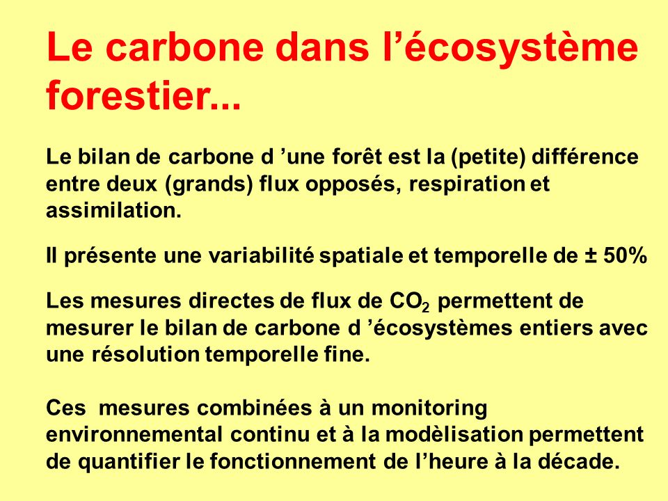 Le carbone dans l'écosystème forestier...