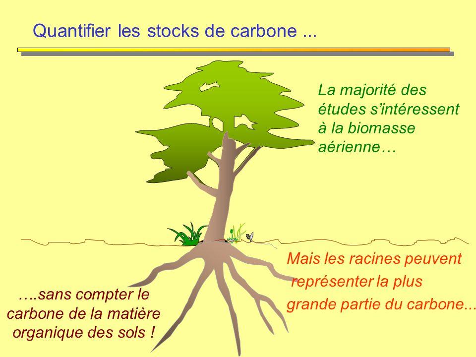 ….sans compter le carbone de la matière organique des sols !