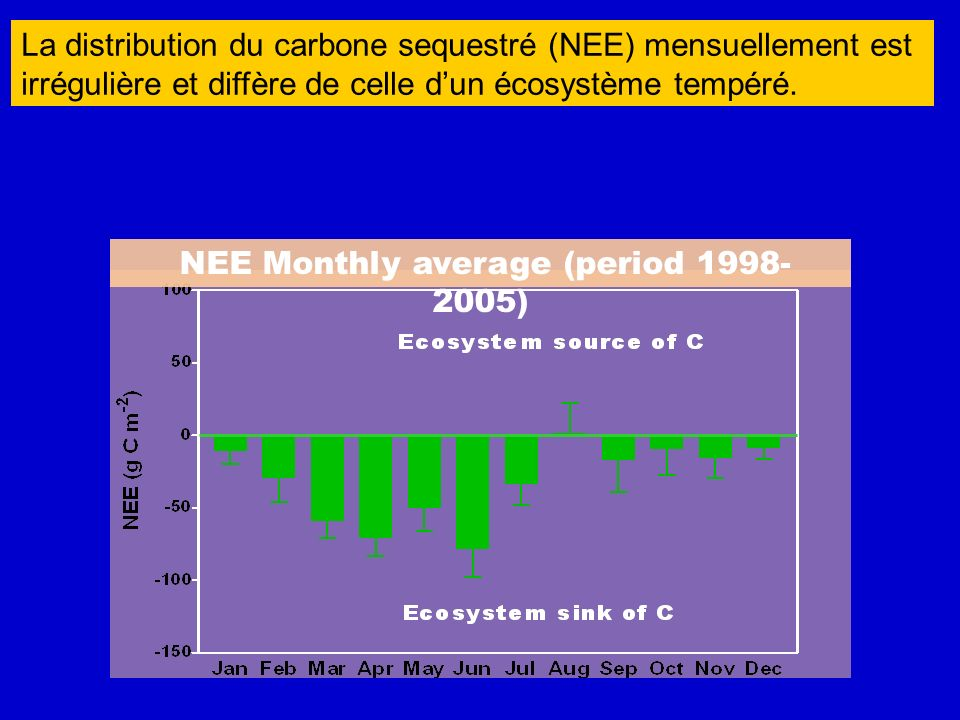 NEE Monthly average (period 1998-2005)