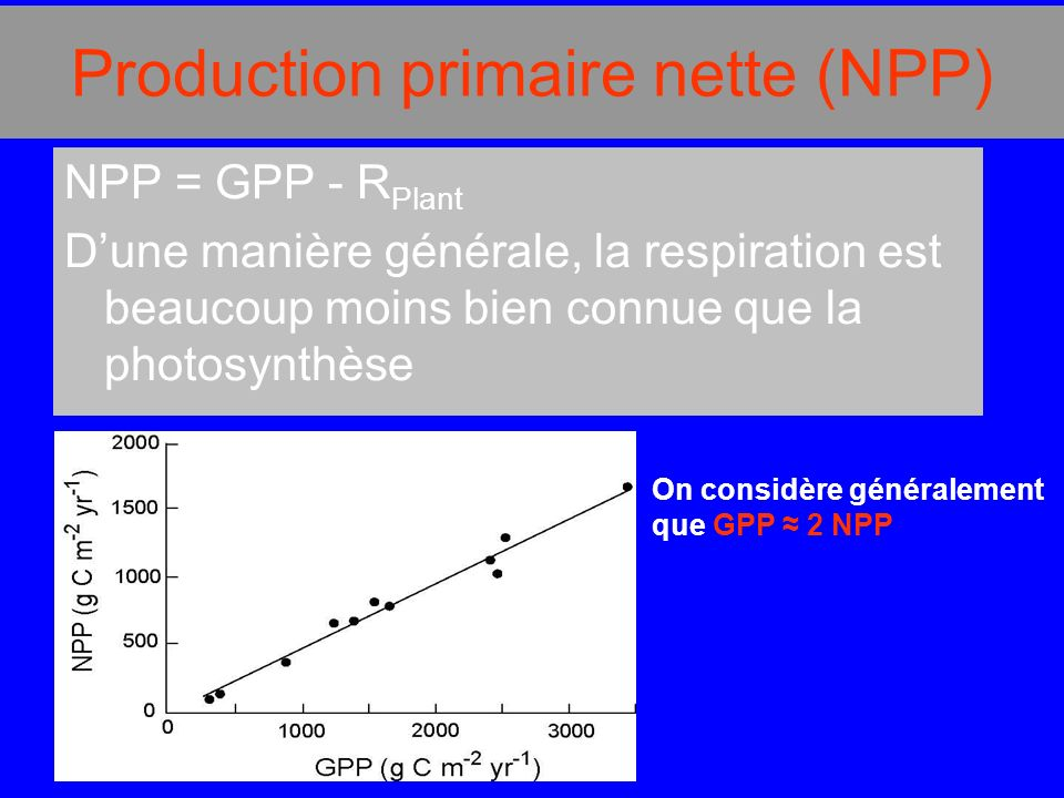 Production primaire nette (NPP)