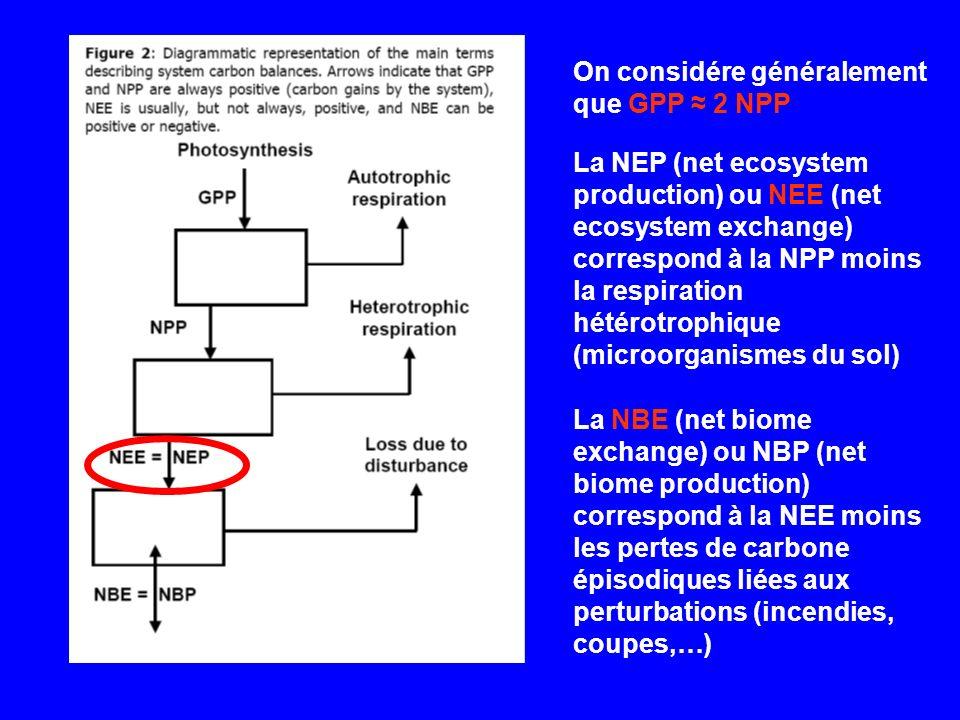 On considére généralement que GPP ≈ 2 NPP