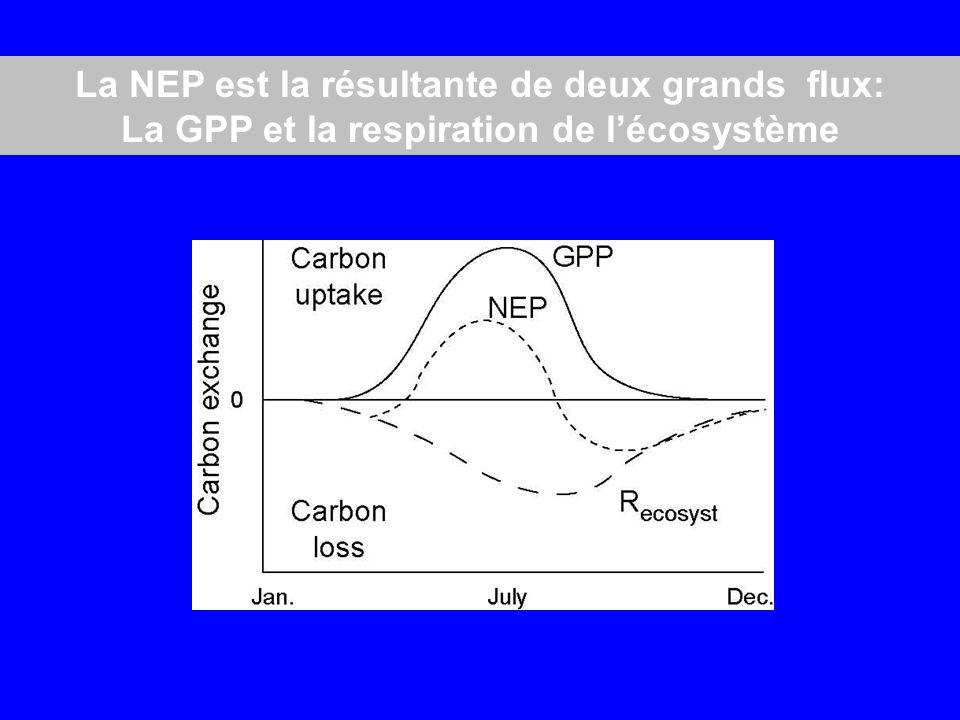La NEP est la résultante de deux grands flux:
