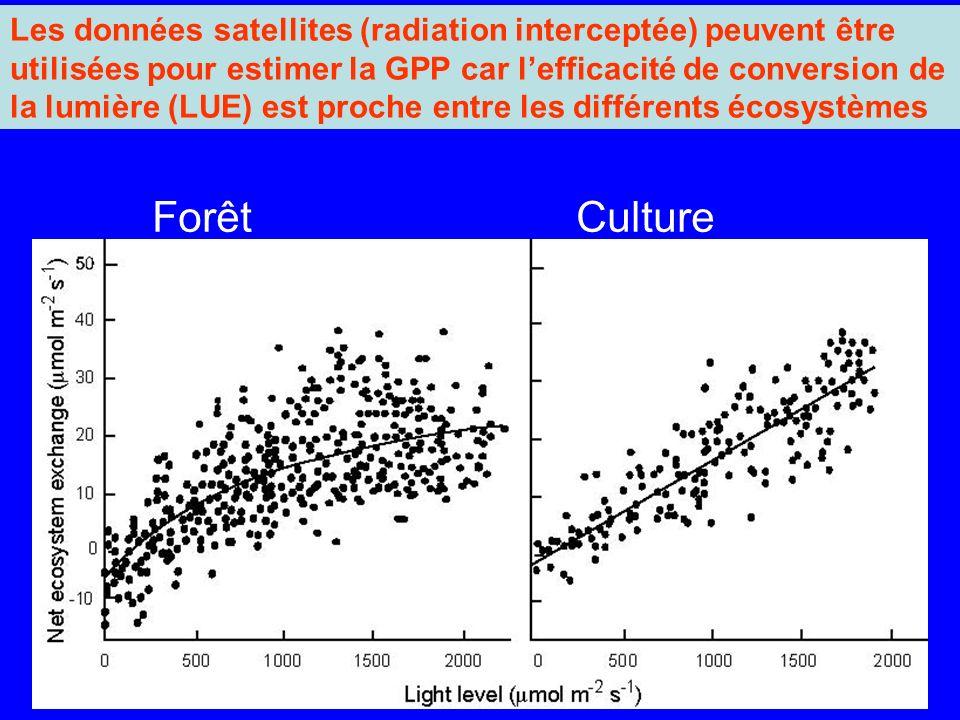 Les données satellites (radiation interceptée) peuvent être utilisées pour estimer la GPP car l'efficacité de conversion de la lumière (LUE) est proche entre les différents écosystèmes