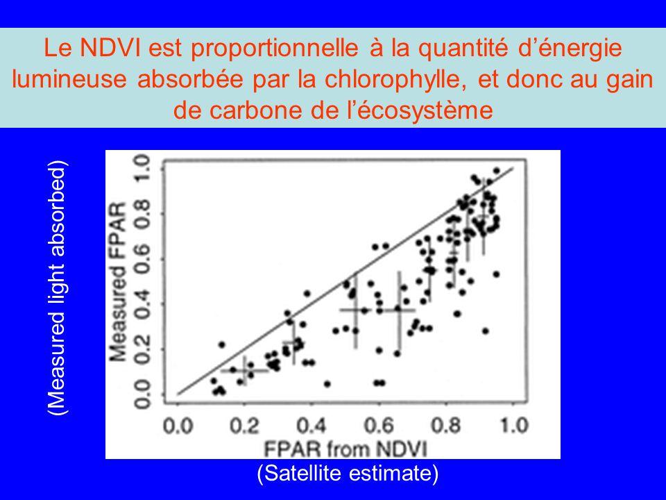 Le NDVI est proportionnelle à la quantité d'énergie lumineuse absorbée par la chlorophylle, et donc au gain de carbone de l'écosystème