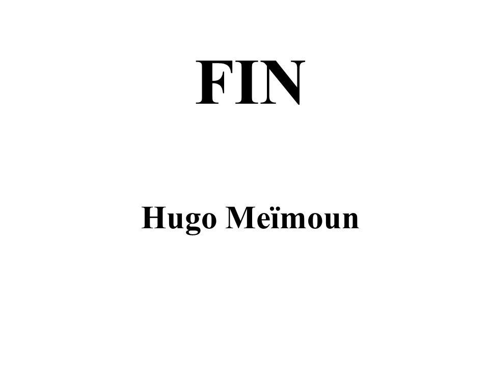 FIN Hugo Meïmoun