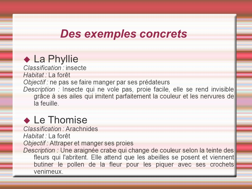Des exemples concrets La Phyllie Le Thomise Classification : insecte