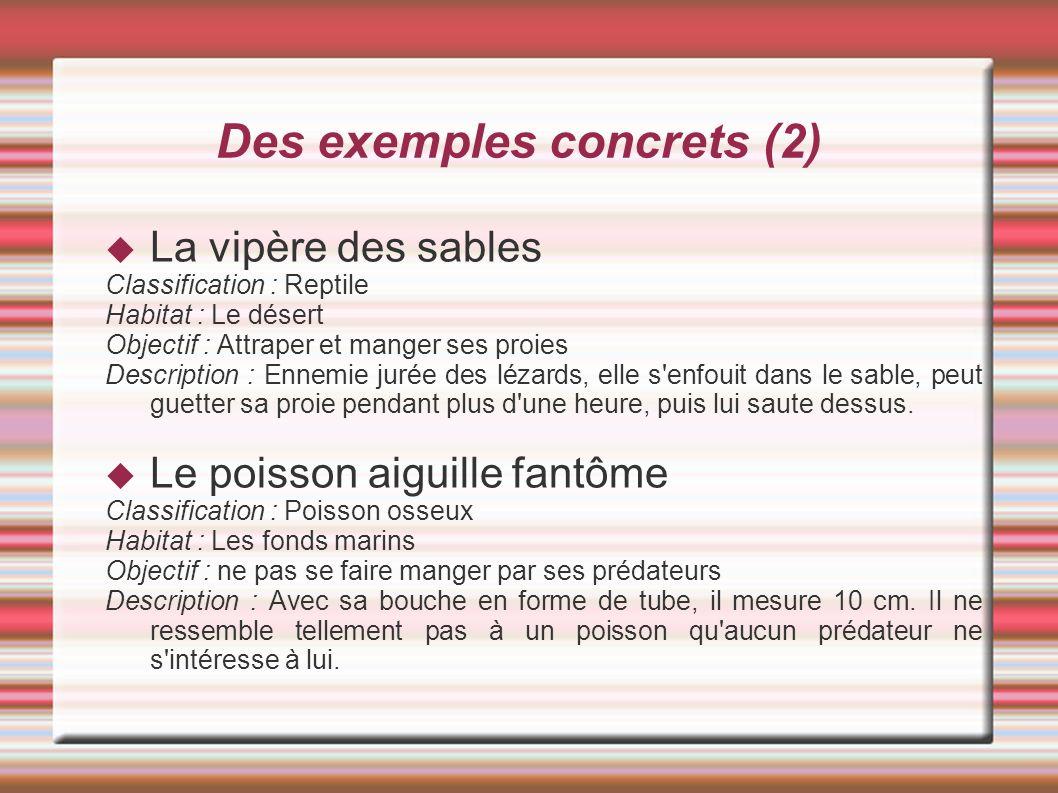 Des exemples concrets (2)