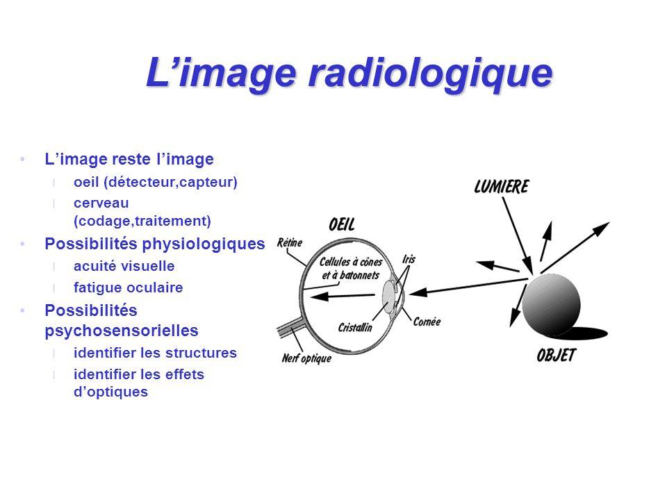 L'image radiologique L'image reste l'image Possibilités physiologiques