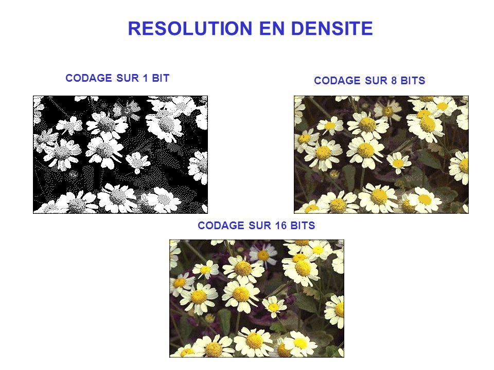 RESOLUTION EN DENSITE CODAGE SUR 1 BIT CODAGE SUR 8 BITS