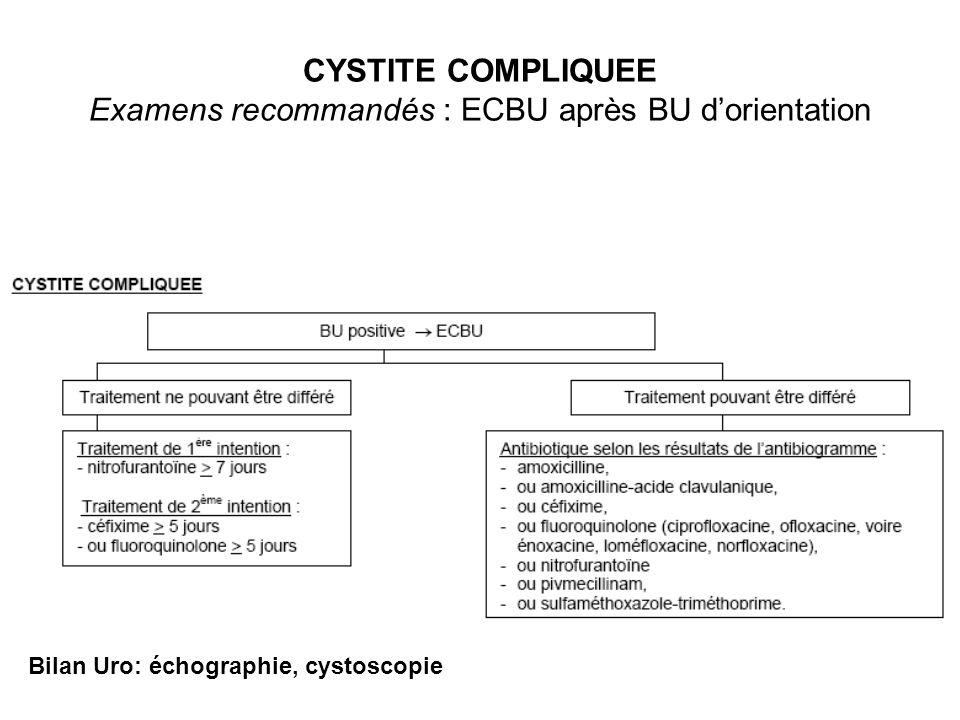 CYSTITE COMPLIQUEE Examens recommandés : ECBU après BU d'orientation