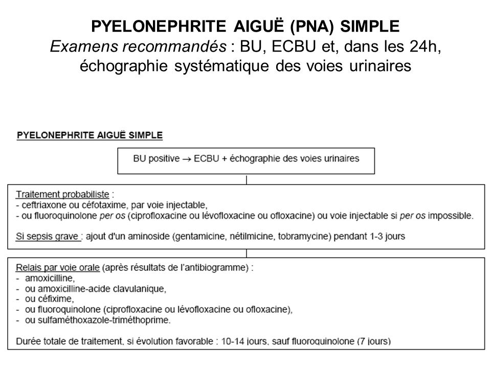 PYELONEPHRITE AIGUË (PNA) SIMPLE Examens recommandés : BU, ECBU et, dans les 24h, échographie systématique des voies urinaires