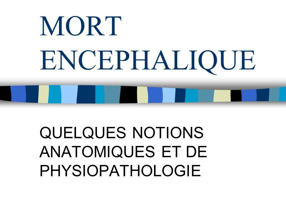 QUELQUES NOTIONS ANATOMIQUES ET DE PHYSIOPATHOLOGIE