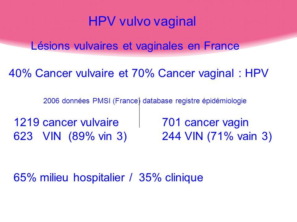 HPV vulvo vaginal Lésions vulvaires et vaginales en France