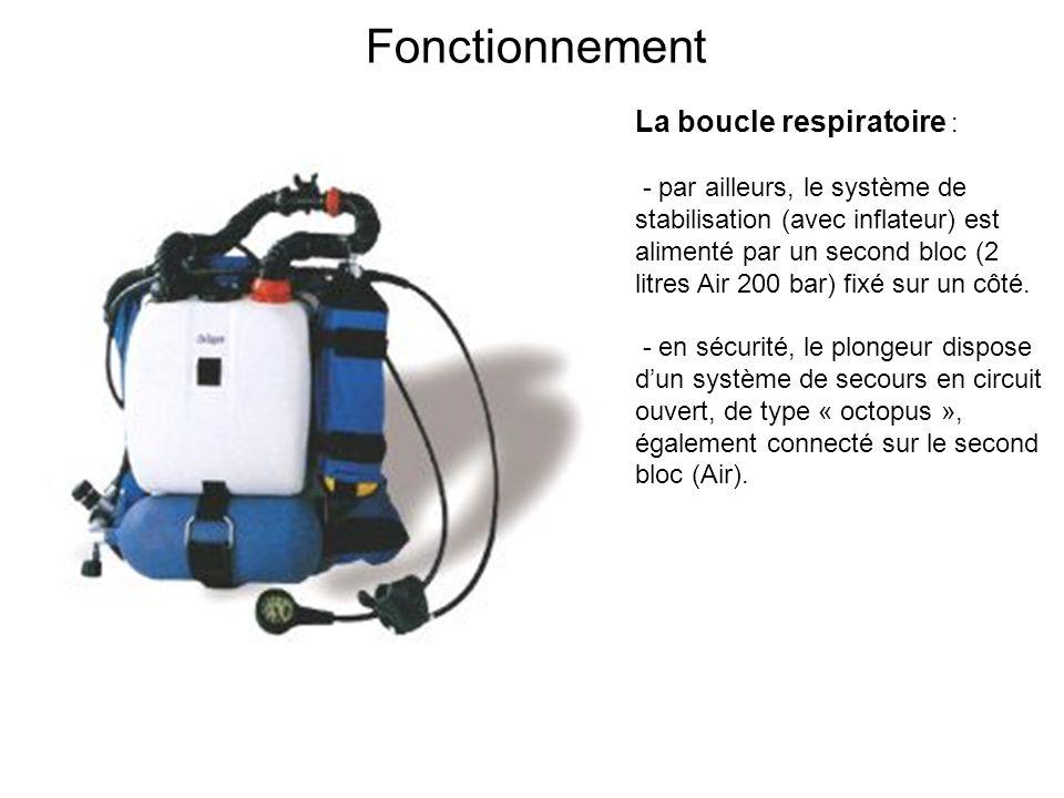 Fonctionnement La boucle respiratoire :
