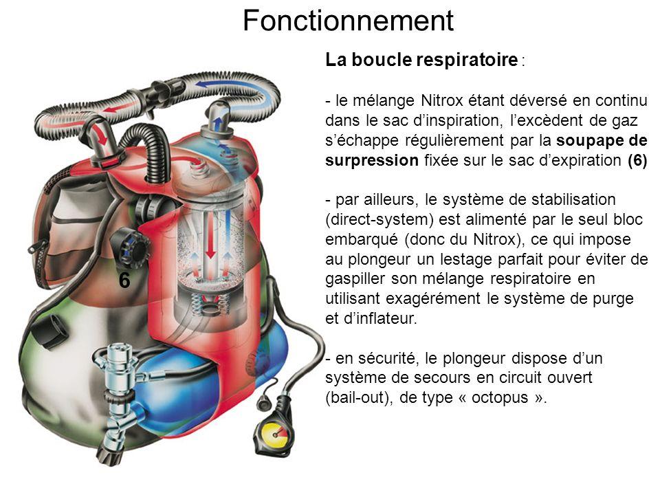 Fonctionnement 6 La boucle respiratoire :