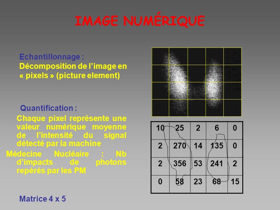 IMAGE NUMÉRIQUE Echantillonnage :