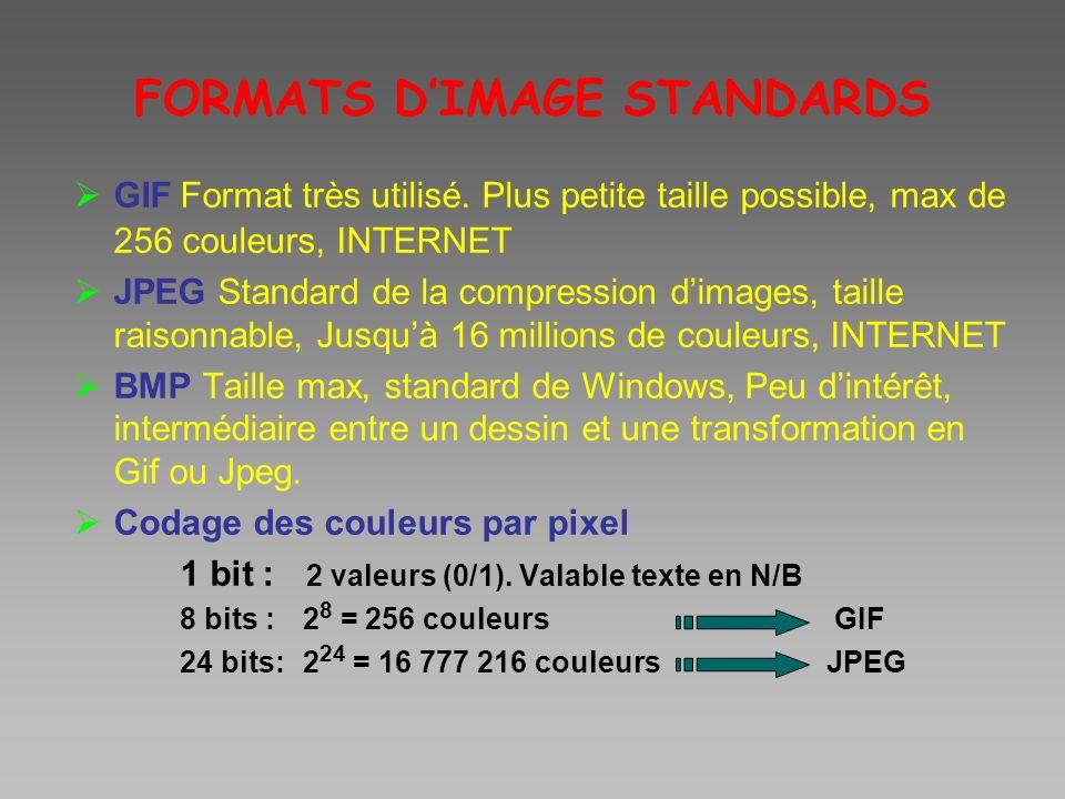 FORMATS D'IMAGE STANDARDS