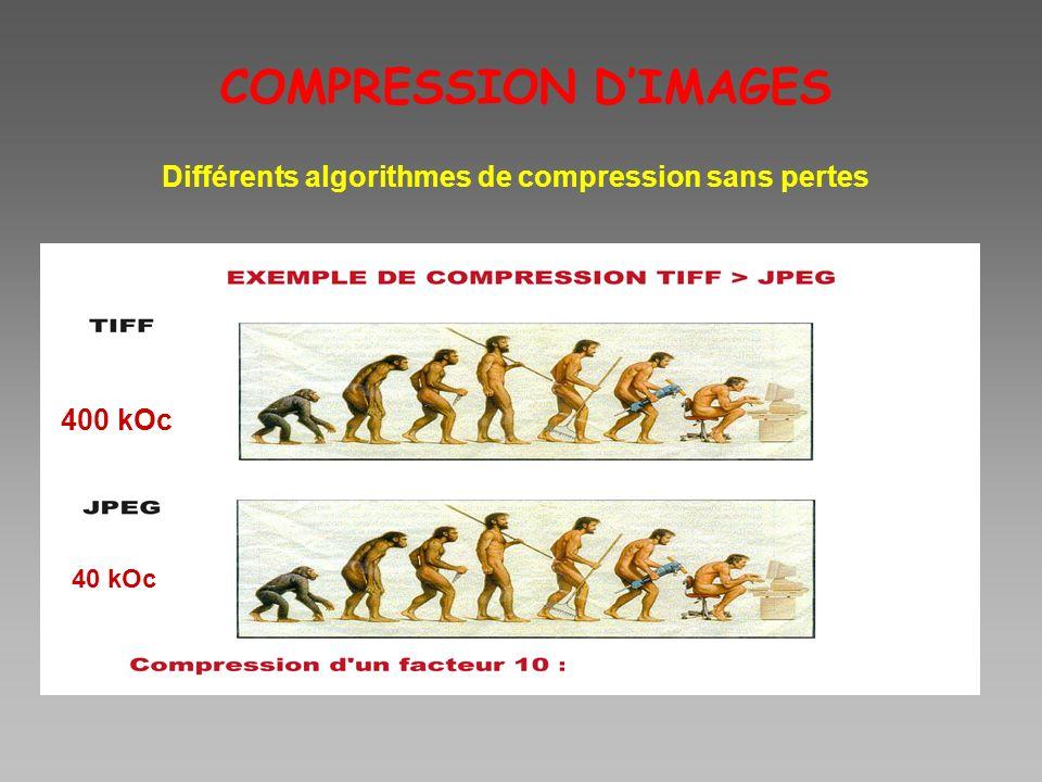 Différents algorithmes de compression sans pertes
