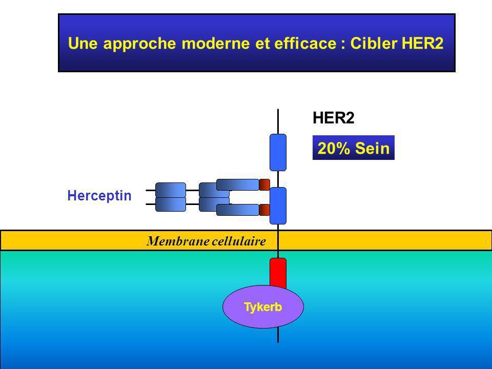 Une approche moderne et efficace : Cibler HER2