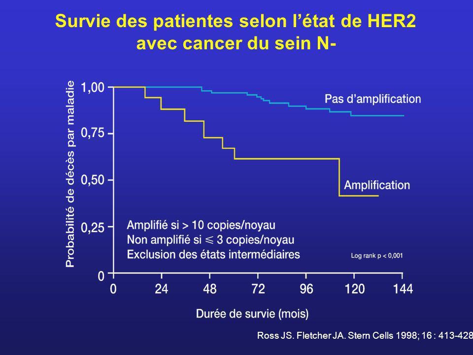 Survie des patientes selon l'état de HER2 avec cancer du sein N-