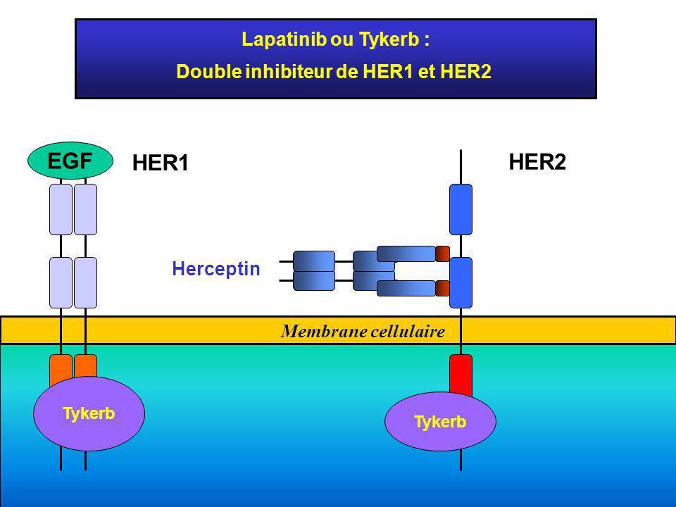 Double inhibiteur de HER1 et HER2