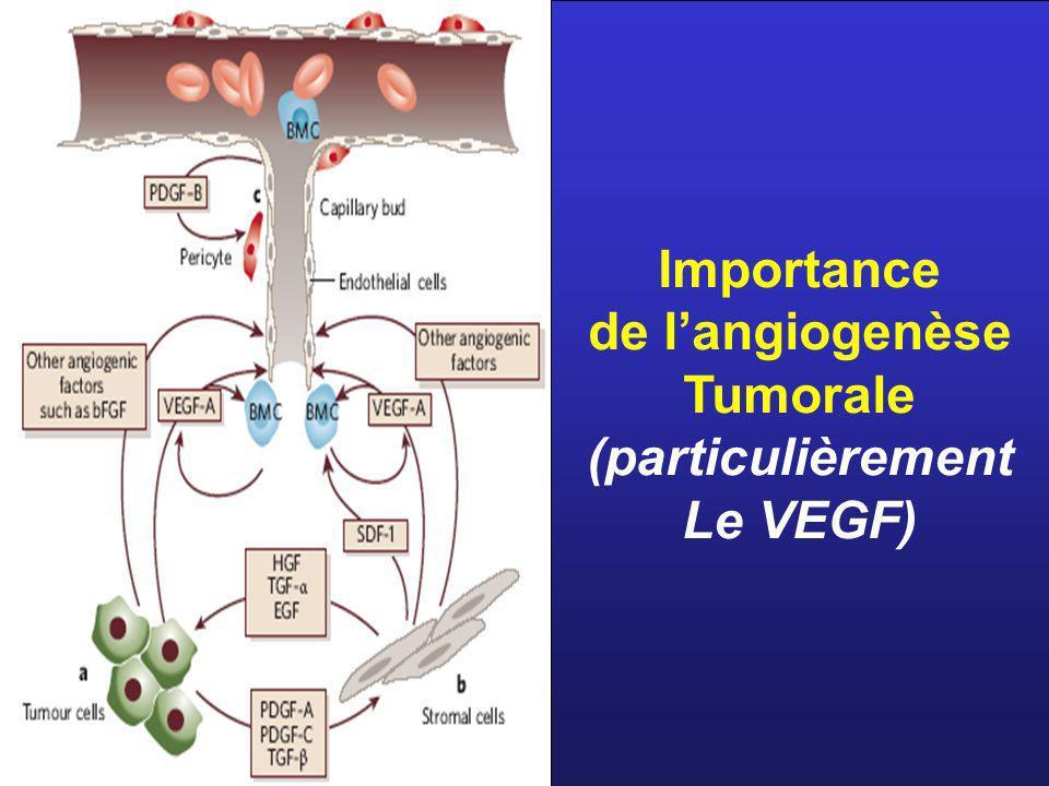 Importance de l'angiogenèse Tumorale (particulièrement Le VEGF)