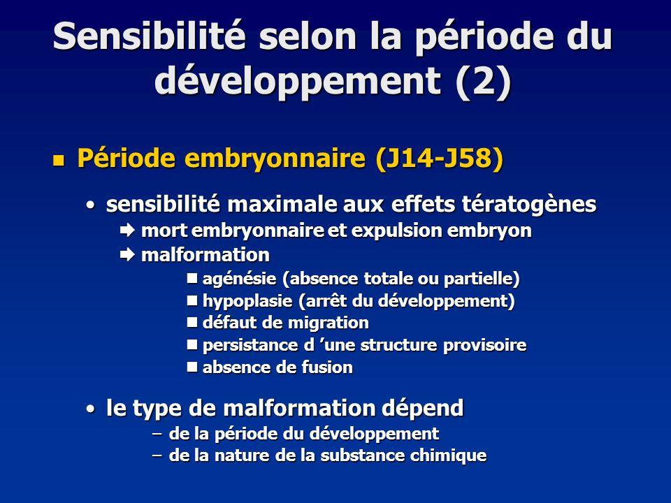 Sensibilité selon la période du développement (2)