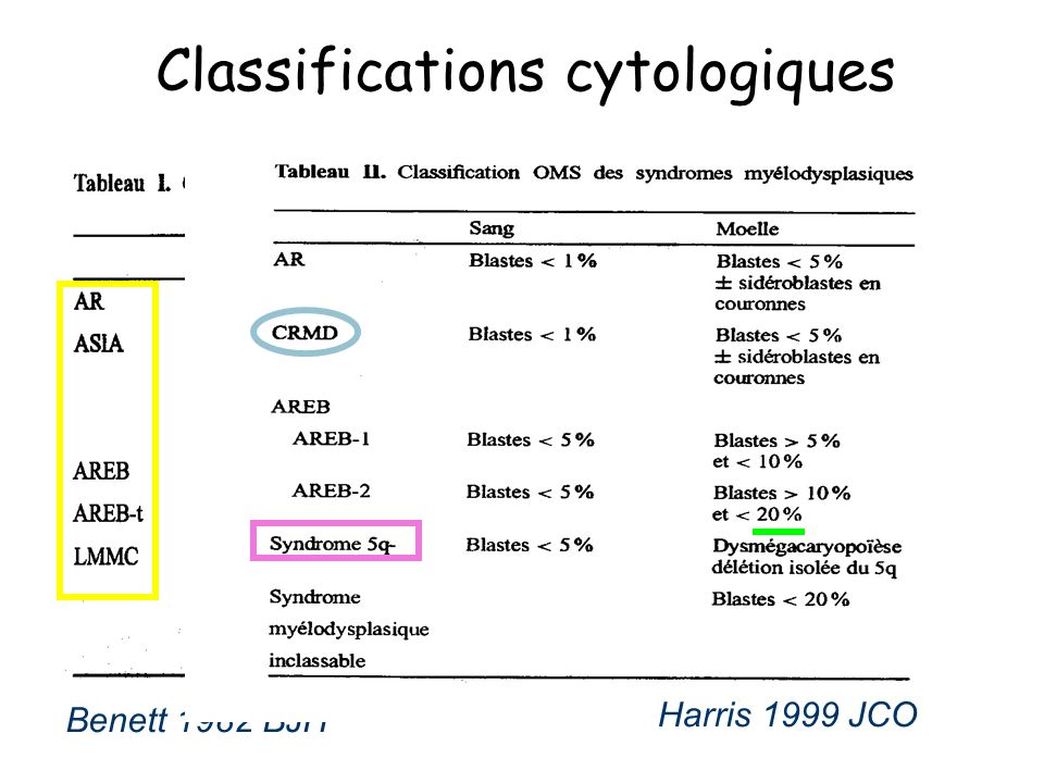 Classifications cytologiques