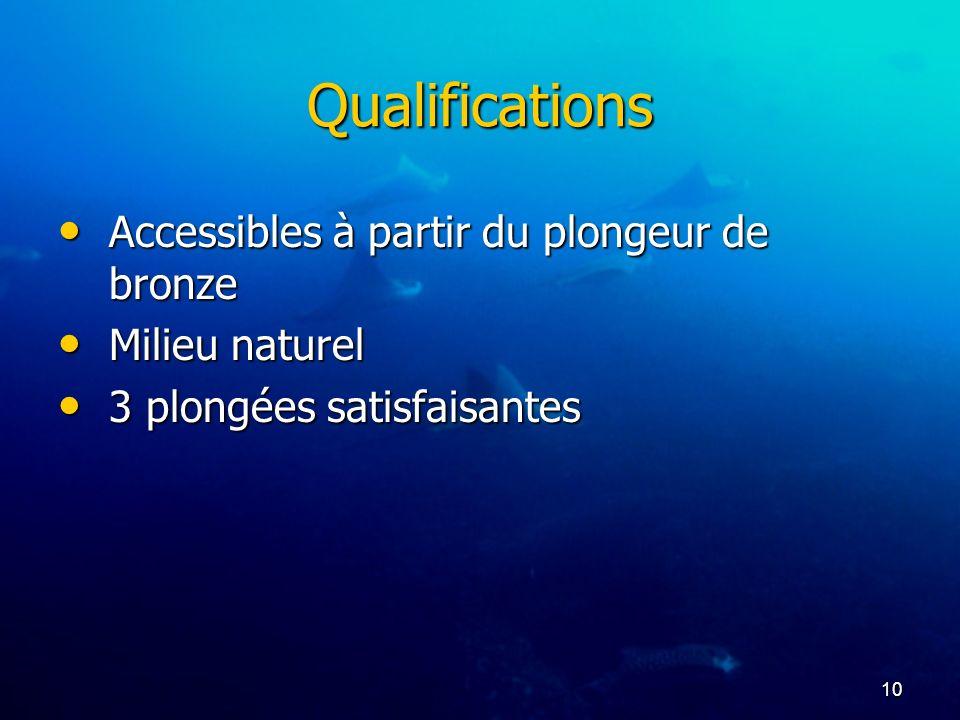Qualifications Accessibles à partir du plongeur de bronze