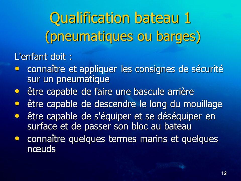Qualification bateau 1 (pneumatiques ou barges)