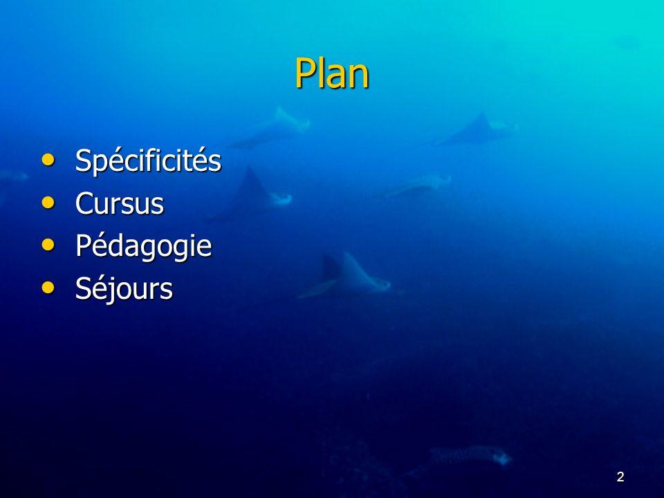 Plan Spécificités Cursus Pédagogie Séjours