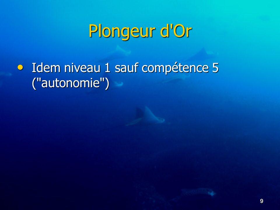 Plongeur d Or Idem niveau 1 sauf compétence 5 ( autonomie )
