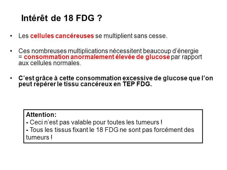 Intérêt de 18 FDG Les cellules cancéreuses se multiplient sans cesse.