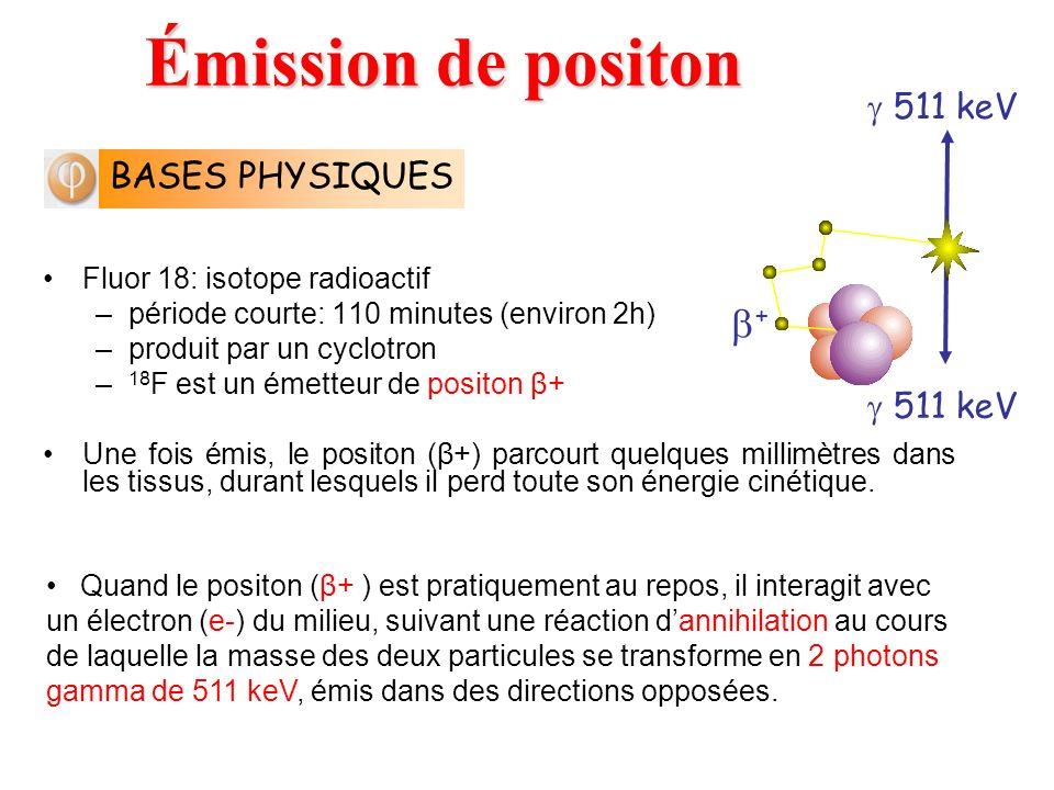 Émission de positon +  511 keV BASES PHYSIQUES