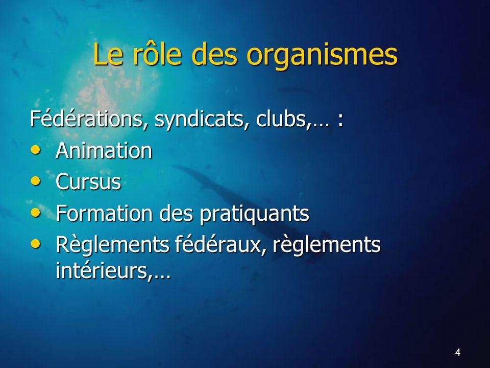 Le rôle des organismes Fédérations, syndicats, clubs,… : Animation