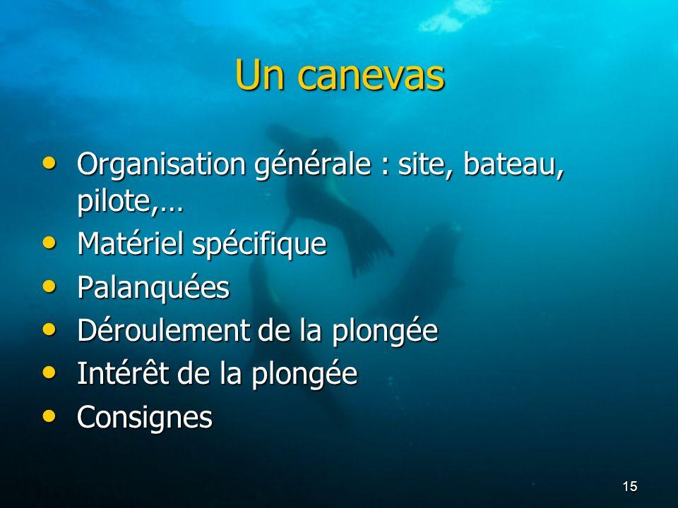 Un canevas Organisation générale : site, bateau, pilote,…