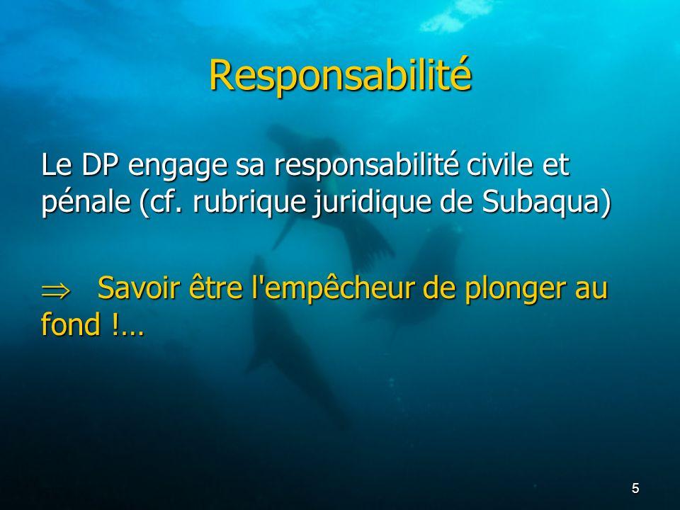 Responsabilité Le DP engage sa responsabilité civile et pénale (cf.