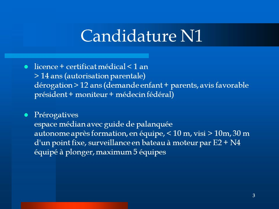 Candidature N1