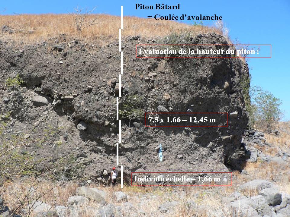 Piton Bâtard = Coulée d'avalanche. Évaluation de la hauteur du piton : 7,5 x 1,66 = 12,45 m.