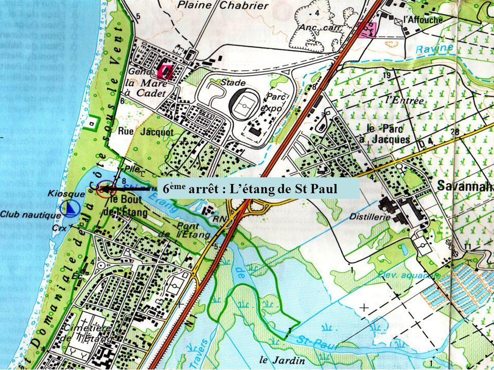 6ème arrêt : L'étang de St Paul