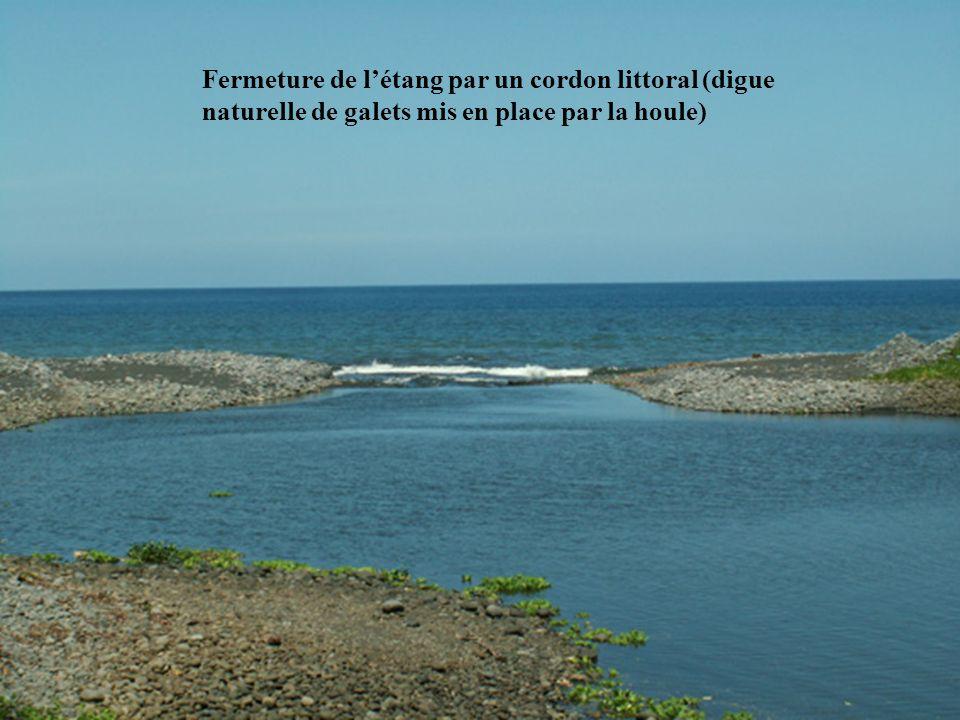 Fermeture de l'étang par un cordon littoral (digue naturelle de galets mis en place par la houle)