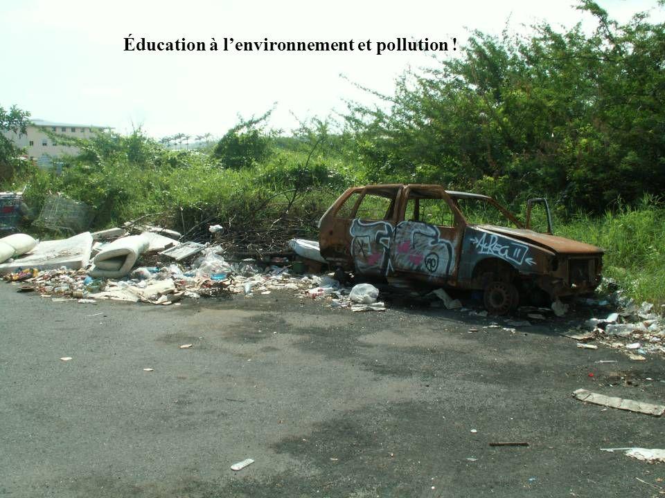 Éducation à l'environnement et pollution !