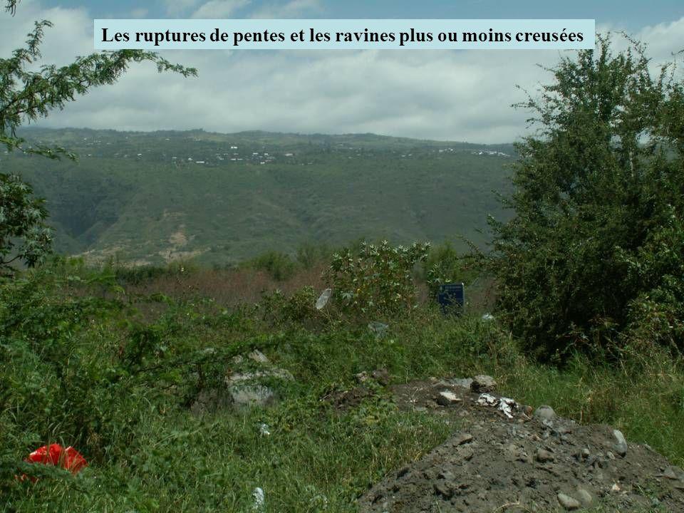 Les ruptures de pentes et les ravines plus ou moins creusées