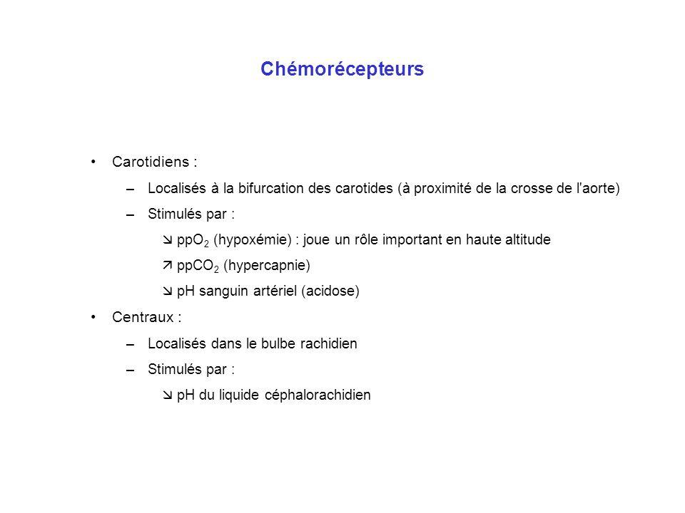 Chémorécepteurs Carotidiens : Centraux :