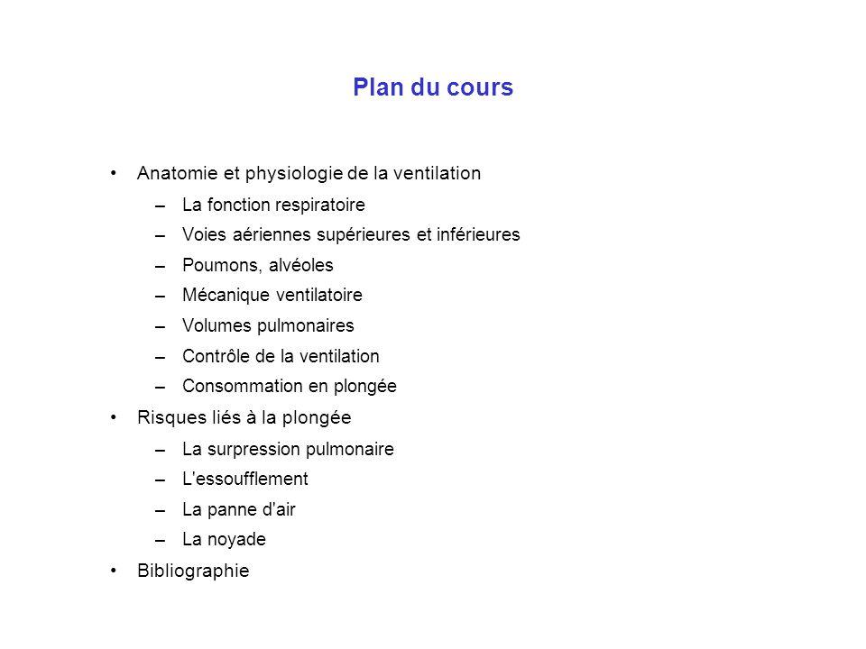 Plan du cours Anatomie et physiologie de la ventilation