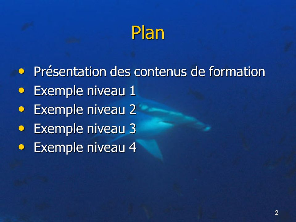 Plan Présentation des contenus de formation Exemple niveau 1