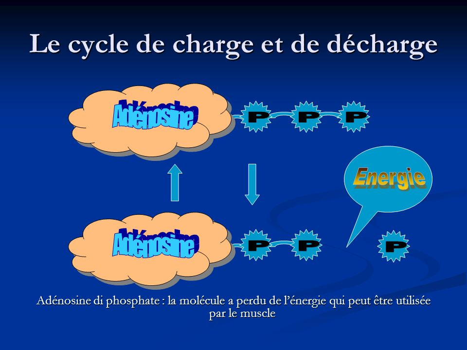 Le cycle de charge et de décharge