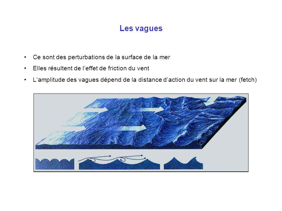 Les vagues Ce sont des perturbations de la surface de la mer