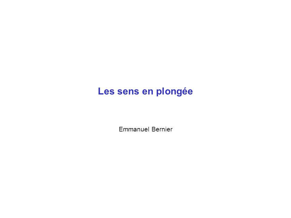 Les sens en plongée Emmanuel Bernier
