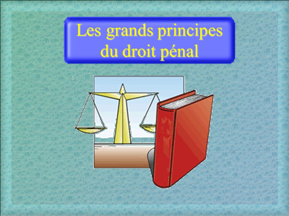 Les grands principes du droit pénal